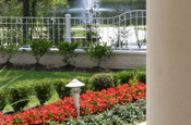 commercial-flowerbeds
