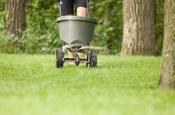 Lawn service programs