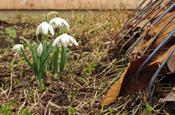 residential-spring